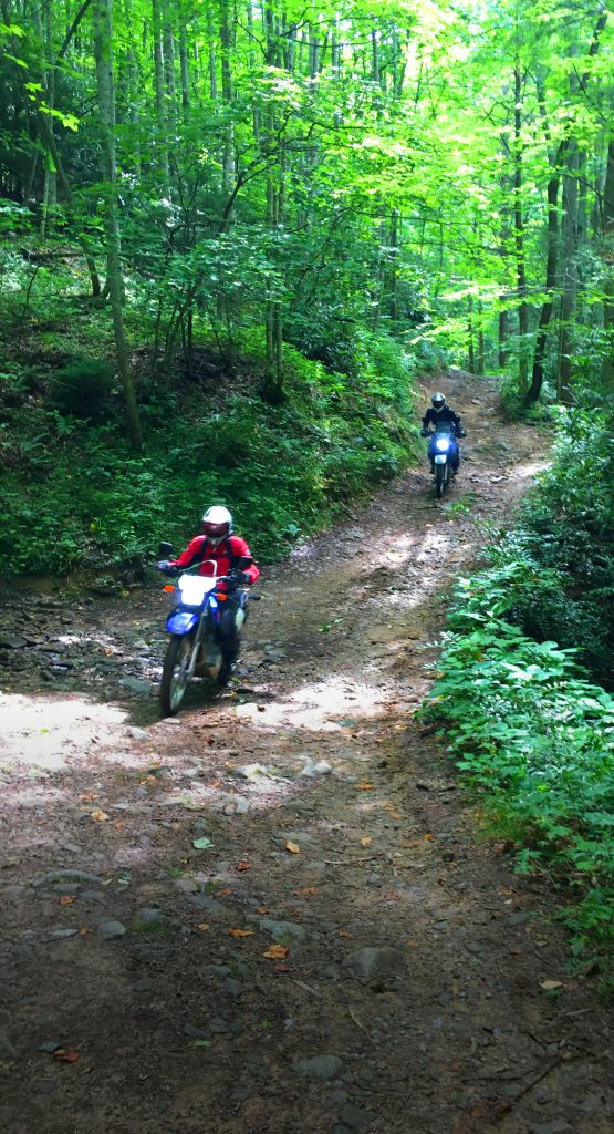 Offroad Motorcycle Action